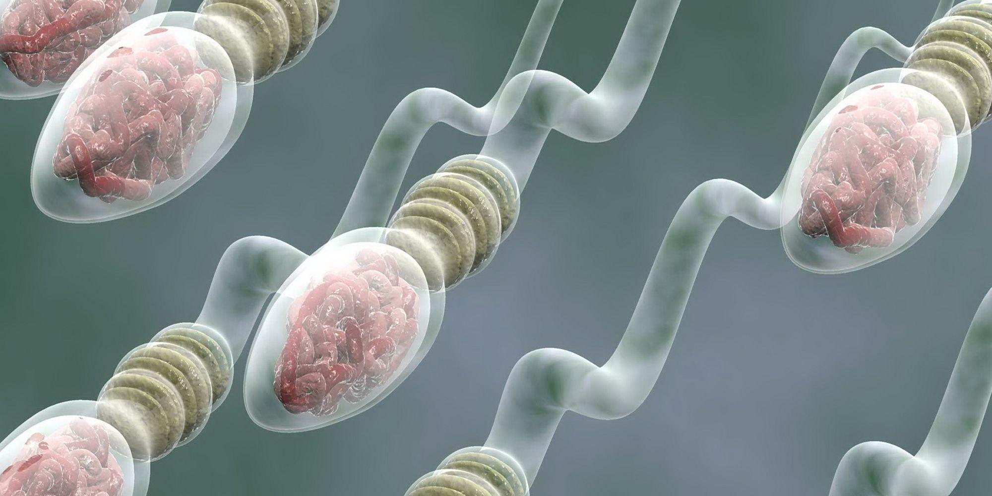 Сперма Изменилась